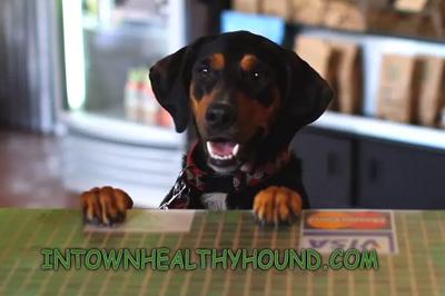inbound-hound-thumbnail